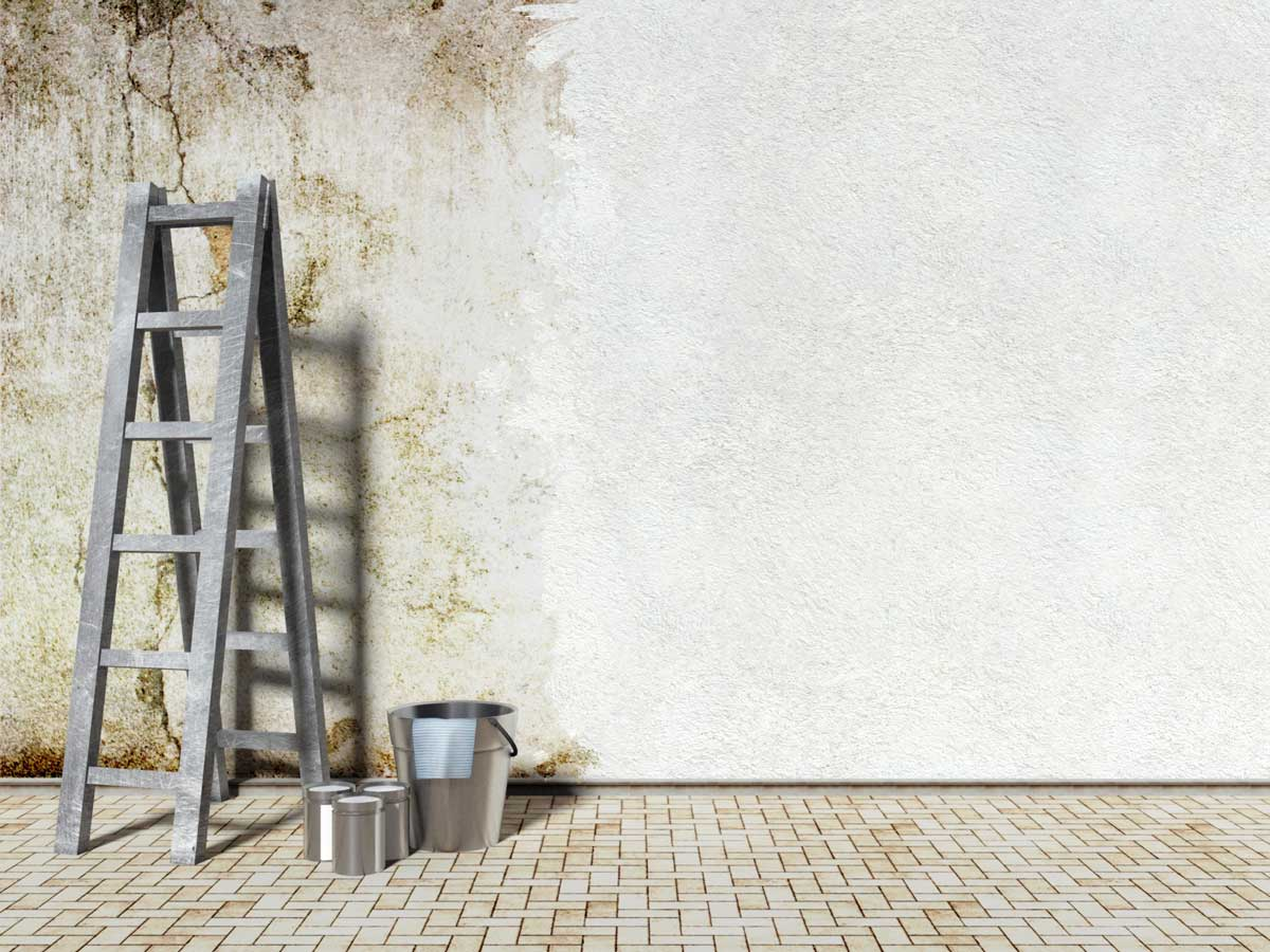 Landlords Must Ensure Fitness for Human Habitation or Face Claims for Compensation